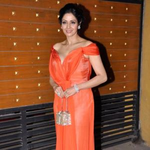 Sridevi in Alberta Ferreti at the Filmfare Awards 2013.