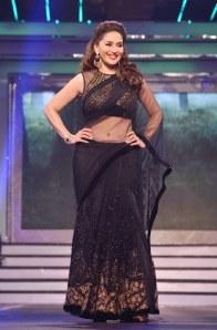 Madhuri Dixit  (4)